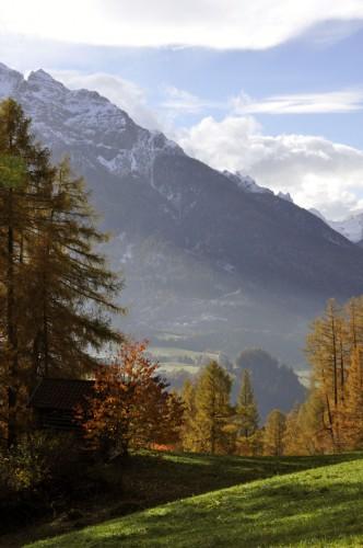 Herbstfarben_6_©susannegurschler
