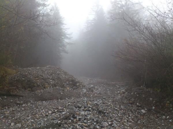 Bachbett im Nebel; Foto: ©susannegurschler