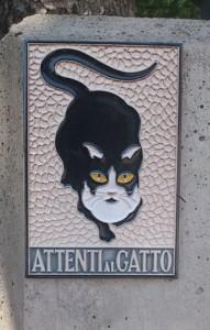 Attenti al gatto